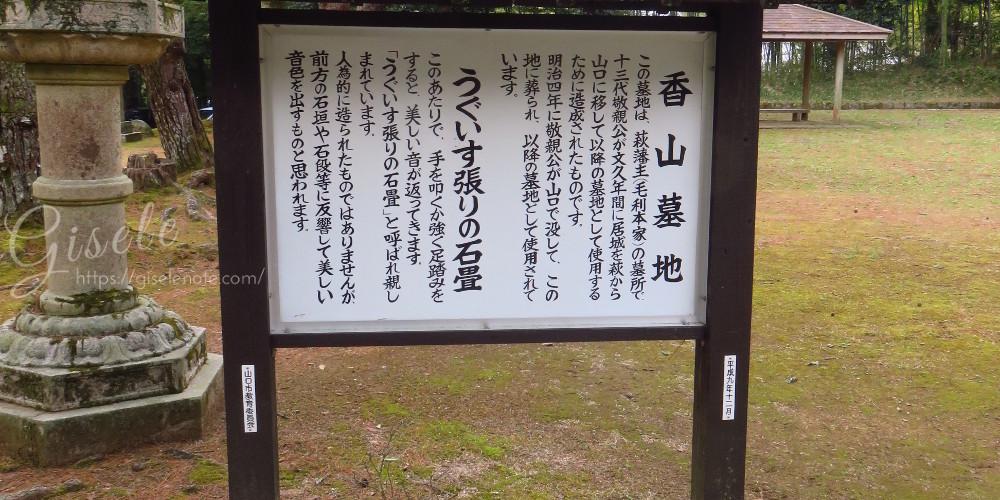 IMG_0822_2